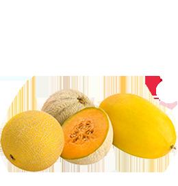 Melonenvielfalt